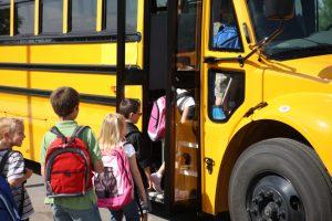 LARGE SIT RITE Safety Vest Restraint  Special Needs Seatbelt Harness School Bus