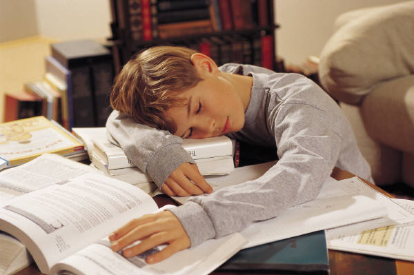 boy sleeping instead of doing homework